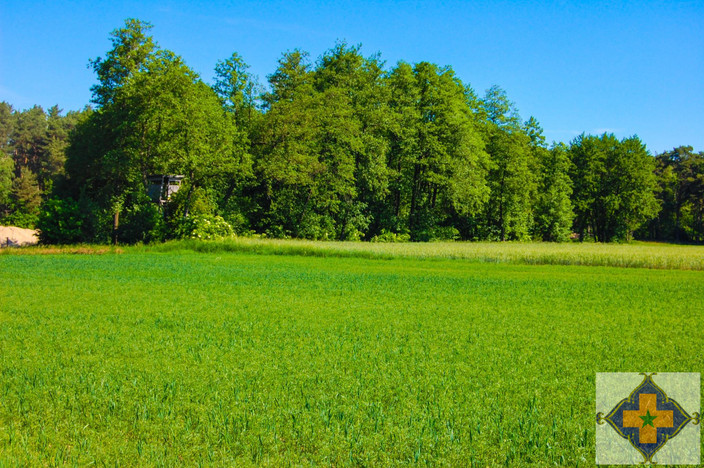 Działka na sprzedaż, Bielawy, 1829 m² | Morizon.pl | 8883