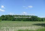 Działka na sprzedaż, Witoldów, 3000 m² | Morizon.pl | 4353 nr4