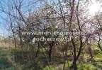 Działka na sprzedaż, Mokas, 4887 m² | Morizon.pl | 6725 nr10