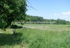 Działka na sprzedaż, Witoldów, 3000 m² | Morizon.pl | 4352 nr2