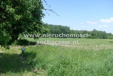 Działka na sprzedaż, Witoldów, 3000 m²