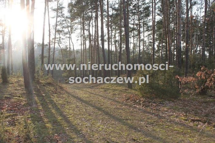 Działka na sprzedaż, Radziwiłka, 165642 m² | Morizon.pl | 2812