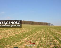 Morizon WP ogłoszenia | Działka na sprzedaż, Zabierzów, 3000 m² | 7140