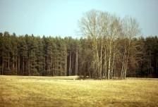 Działka na sprzedaż, Kolonia, 27000 m²