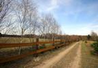 Działka na sprzedaż, Głuch, 4500 m² | Morizon.pl | 1422 nr4