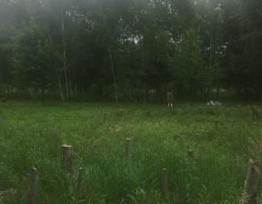 Działka na sprzedaż, Dziechciniec, 2000 m²