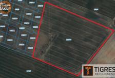 Działka na sprzedaż, Kleszczewo, 42527 m²