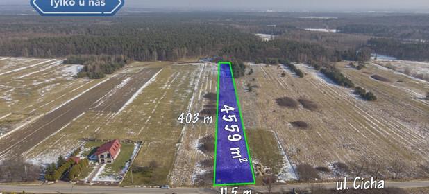 Działka na sprzedaż 4559 m² Myszkowski Koziegłowy Gliniana Góra Cicha - zdjęcie 2