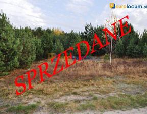 Działka na sprzedaż, Marzysz Marzysz, 3001 m²