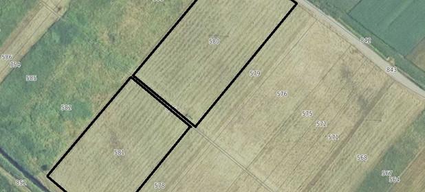 Działka na sprzedaż 7100 m² Buski (Pow.) Gnojno (Gm.) Raczyce - zdjęcie 2