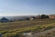 Działka na sprzedaż, Bodzanów, 2800 m²