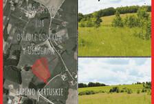 Działka na sprzedaż, Łapino Kartuskie, 27788 m²