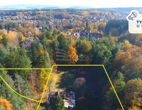 Działka na sprzedaż, Polanica-Zdrój Piastowska, 7998 m²