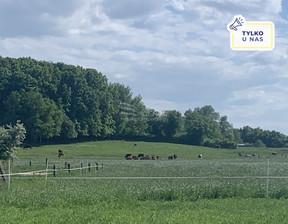 Działka na sprzedaż, Słajszewo, 3022 m²
