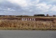 Działka na sprzedaż, Zaczarnie, 3900 m²
