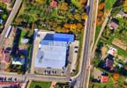 Lokal użytkowy do wynajęcia, Pilzno, 895 m² | Morizon.pl | 1881 nr8