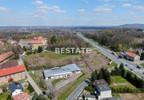 Lokal użytkowy na sprzedaż, Tarnów, 938 m²   Morizon.pl   2210 nr8