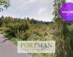 Morizon WP ogłoszenia   Działka na sprzedaż, Nowe Kościeliska, 3165 m²   0688