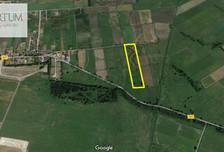 Działka na sprzedaż, Roszkowo Wierzbowa, 40500 m²