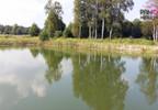 Działka na sprzedaż, Silno, 4290 m² | Morizon.pl | 0525 nr8