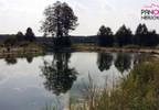 Działka na sprzedaż, Silno, 4290 m² | Morizon.pl | 0525 nr2