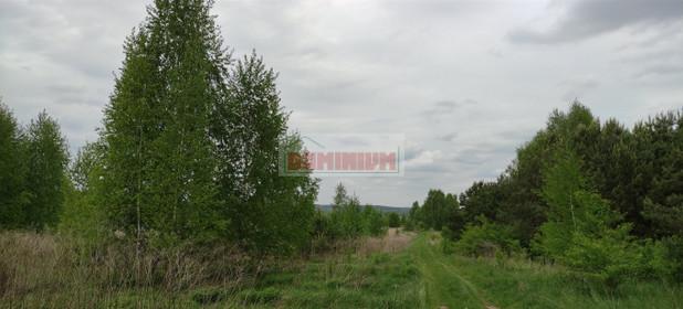 Działka na sprzedaż 1000 m² Białostocki Supraśl Ogrodniczki - zdjęcie 3