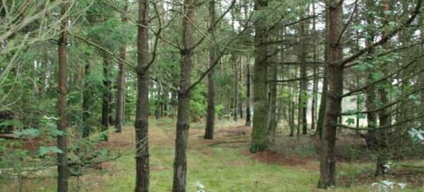 Działka na sprzedaż 7680 m² Wejherowski Szemud Kamień Jastrzębia - zdjęcie 3