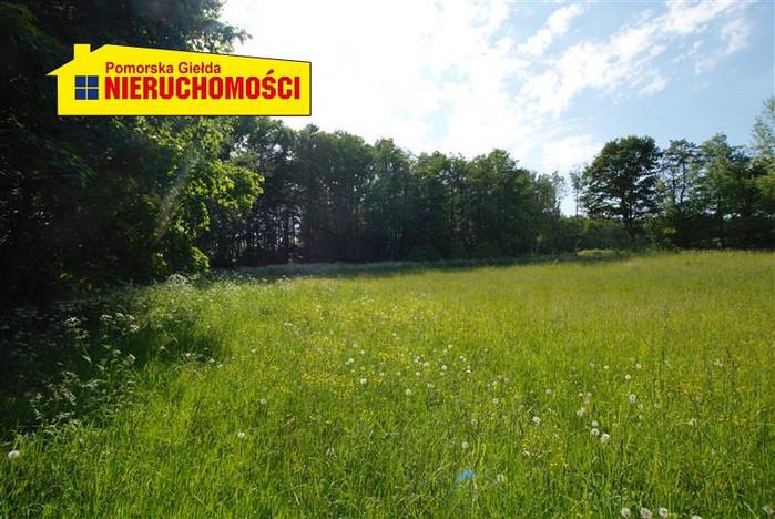 Działka na sprzedaż, Żelisławie, 8600 m² | Morizon.pl | 9797