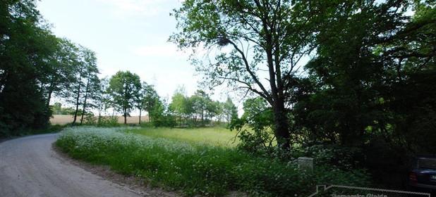 Działka na sprzedaż 8600 m² Drawski Czaplinek Żelisławie - zdjęcie 3