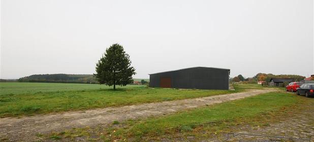 Inny obiekt do wynajęcia 373 m² Człuchowski Czarne Sierpowo - zdjęcie 3