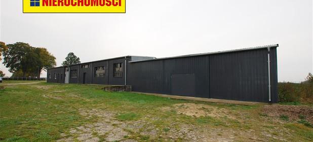 Inny obiekt do wynajęcia 373 m² Człuchowski Czarne Sierpowo - zdjęcie 1