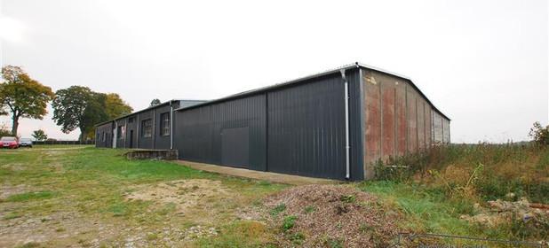Inny obiekt do wynajęcia 373 m² Człuchowski Czarne Sierpowo - zdjęcie 2