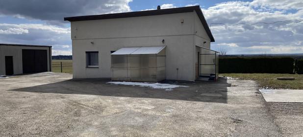 Grunt przemysłowy na sprzedaż 41563 m² Jędrzejowski (Pow.) Jędrzejów (Gm.) Prząsław - zdjęcie 2