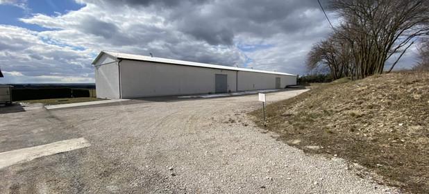 Grunt przemysłowy na sprzedaż 41563 m² Jędrzejowski (Pow.) Jędrzejów (Gm.) Prząsław - zdjęcie 1