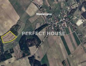 Działka na sprzedaż, Niedarzyno, 29208 m²