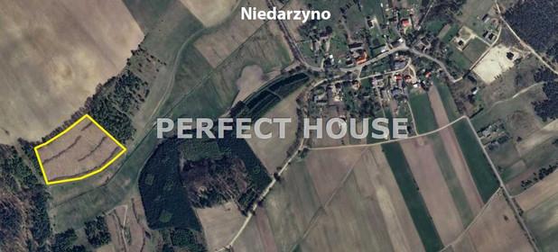 Działka na sprzedaż 29208 m² Bytowski Borzytuchom Niedarzyno - zdjęcie 1