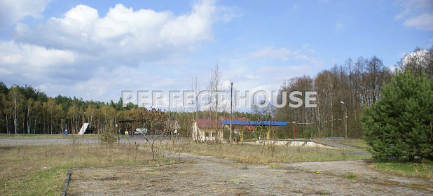 Inny obiekt na sprzedaż 8000 m² Międzyrzecki Trzciel - zdjęcie 2