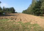 Działka na sprzedaż, Przeradowo, 3900 m² | Morizon.pl | 9824 nr2