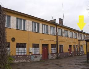 Lokal użytkowy do wynajęcia, Oleśnica Moniuszki, 283 m²