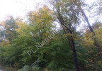 Działka na sprzedaż, Otwock, 4732 m² | Morizon.pl | 5490 nr7