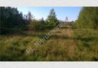 Działka na sprzedaż, Budy-Grzybek, 15851 m²   Morizon.pl   4259 nr7