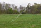 Działka na sprzedaż, Grądy, 13505 m²   Morizon.pl   5370 nr6