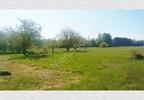 Działka na sprzedaż, Redlanka, 54740 m²   Morizon.pl   2194 nr6