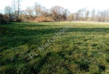 Działka na sprzedaż, Jaktorów, 5700 m²