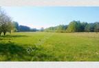 Działka na sprzedaż, Redlanka, 54740 m²   Morizon.pl   2194 nr4