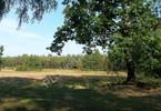Morizon WP ogłoszenia | Działka na sprzedaż, Cisówka, 15500 m² | 9238