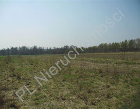 Działka na sprzedaż, Rudno, 8770 m²