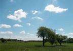 Działka na sprzedaż, Tyborów, 1380 m² | Morizon.pl | 4901 nr3