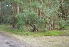 Działka na sprzedaż, Ołdakowizna, 7774 m²