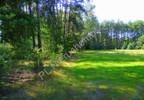 Działka na sprzedaż, Cyganka, 4100 m²   Morizon.pl   4277 nr3